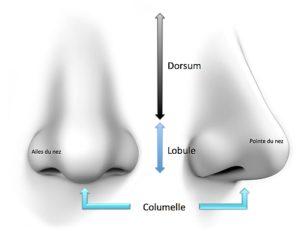 rhinoplastie médicale paris - Médecine Esthétique Paris - Phoenix Esthétic