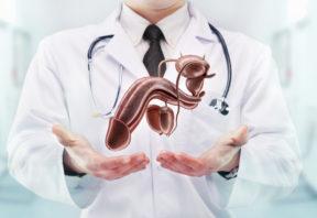 Tout savoir sur la pénoplastie - Tout savoir sur la pénoplastie - Phoenix Esthetic